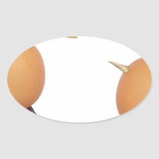 Two eggs as birds with beaks skull and legs oval sticker