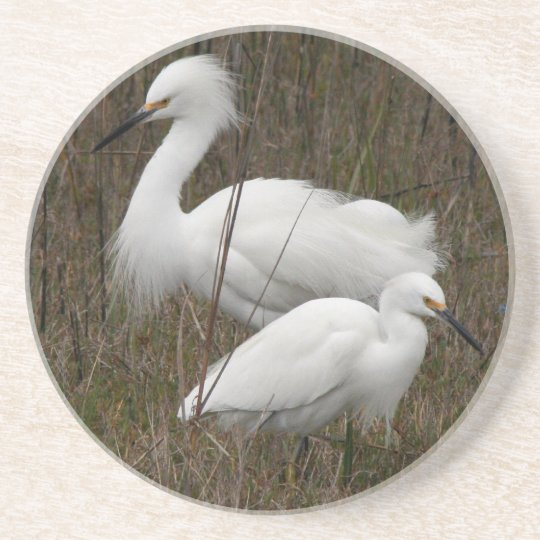 Two Egrets Coaster