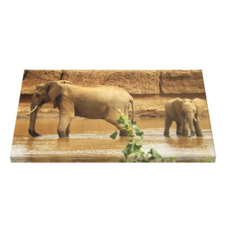 Two Elephants African Wildlife Photography Canvas Print