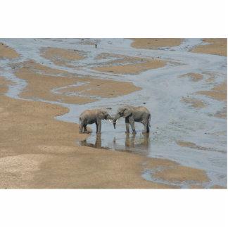 Two Elephants Meeting in Stream Statuette