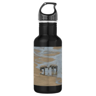 Two Elephants Meeting in Stream Water Bottle