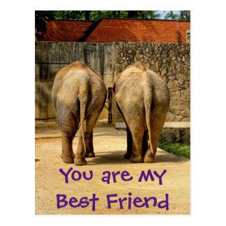 Two elephants - my best friend postcard