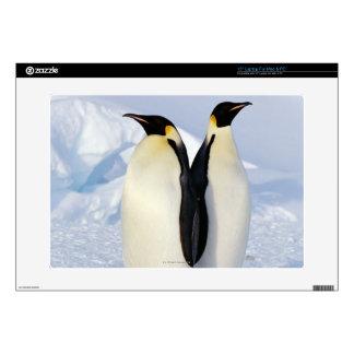 """Two Emperor Penguins in Antarctica 15"""" Laptop Decal"""