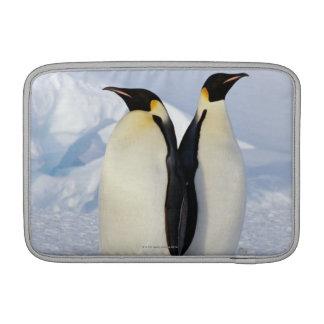 Two Emperor Penguins in Antarctica MacBook Sleeves