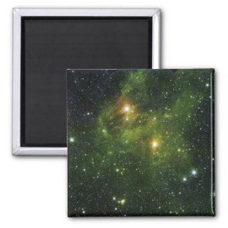 Two extremely bright stars magnets