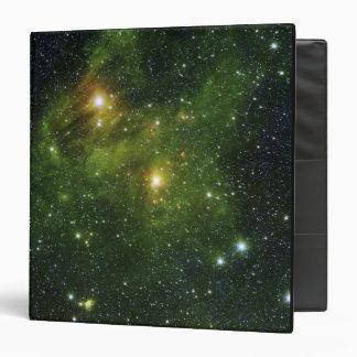 Two extremely bright stars vinyl binder