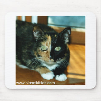 Two-Faced Cat from Planet Kitties Mouse Pad