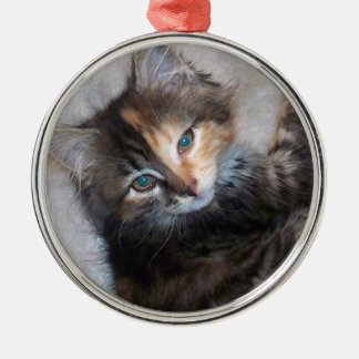 two faced cat ornament