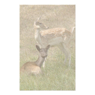Two Fallow Deer Fawns Stationery