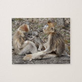 Two female Golden Monkeys with newborns Jigsaw Puzzle