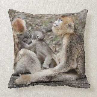 Two female Golden Monkeys with newborns Pillows
