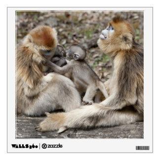 Two female Golden Monkeys with newborns Wall Sticker