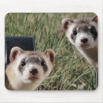 Two Ferrets Mouse Pad