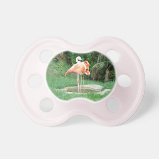 Two Flamingos Pacifier