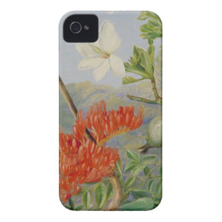 Two Flowering Shrubs of Natal and a Trogon iPhone 4 Cover