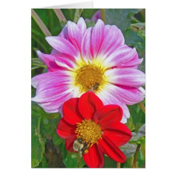 """two Flowers And Two Bees"" Notecard by whatawonderfulworld at Zazzle"