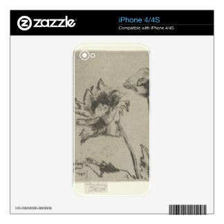 Two Flowers - French Ren. Skins For The iPhone 4S