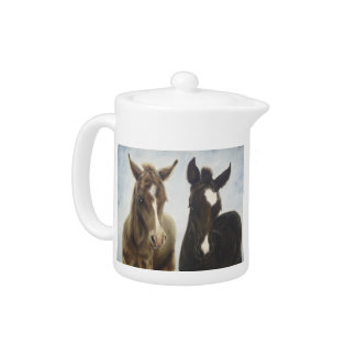 Two Foals Teapot