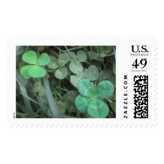 Two Four-Leaf Clovers - Lucky Postage