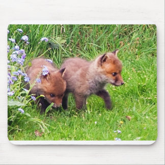 two fox cubs mouse pad