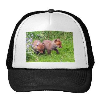 two fox cubs trucker hat