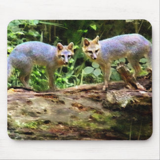 TWO FOX ON A TREE MOUSE PAD