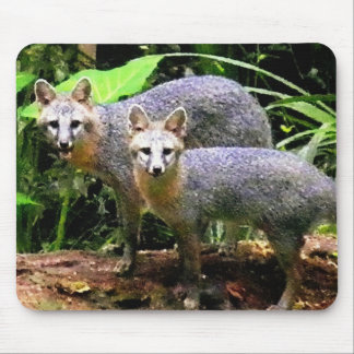 TWO FOX PLAYMATES MOUSE PAD
