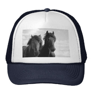 Two Friesian stallions. Trucker Hat
