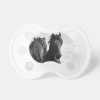 Two Friesian stallions. Pacifiers