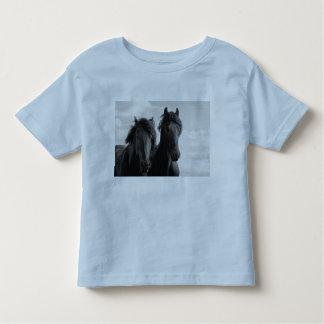 Two Friesian stallions. Shirts