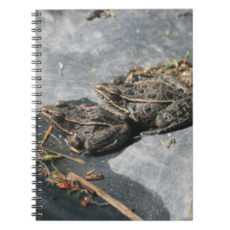 Two Frogs Notebook