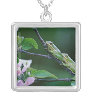 Two Frogs on Branch Credit as Nancy Pendants