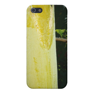 Two geckos hawaii iphone four case iPhone 5/5S cover