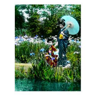 Two Geisha Visiting a Pond Vintage Old Japan Postcard