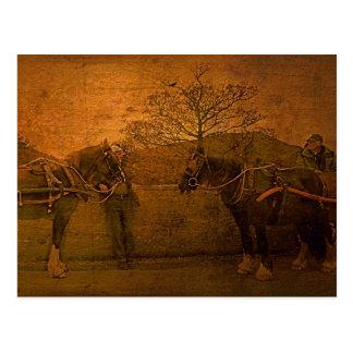 Two Gentlemen of Aran II Postcard
