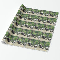 Two giant panda. Animal photography Gift Wrapping Paper