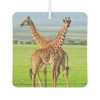 Two Giraffes Air Freshener