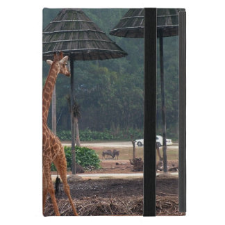 Two giraffes comforting each other in a zoo cover for iPad mini