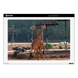 """Two giraffes comforting each other in a zoo. skin for 17"""" laptop"""
