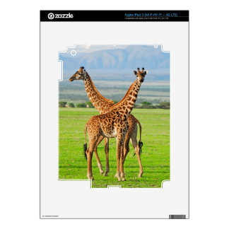 Two Giraffes Decals For iPad 3