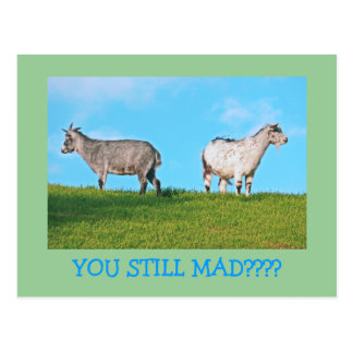 """TWO GOATS, BACKS TO EACH OTHER: """"YOU STILL MAD?"""" POSTCARD"""