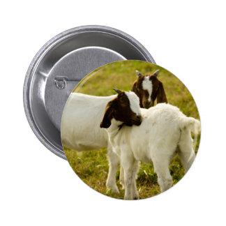 Two Goats Pinback Button
