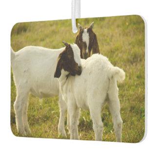 Two Goats Car Air Freshener