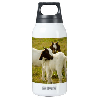 Two Goats Insulated Water Bottle