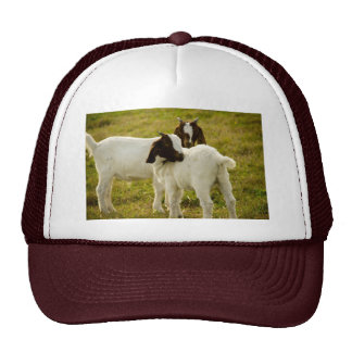Two Goats Trucker Hat