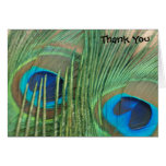 Two Golden Peacock Feathers Wedding Thank You Stationery Note Card