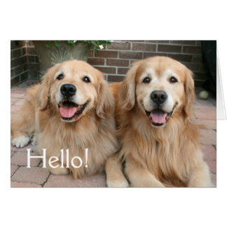 Two Golden Retriever Dogs Outside Thinking of You Card