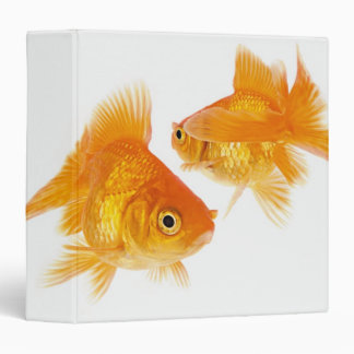 Two Goldfish Crossing Each Other 3 Ring Binder