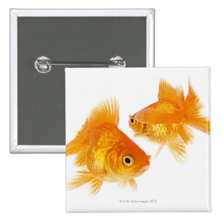 Two Goldfish Crossing Each Other 2 Inch Square Button
