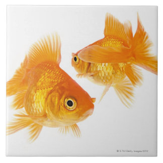 Two Goldfish Crossing Each Other Ceramic Tile